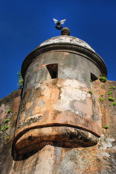 La paloma en la garita, Old San Juan
