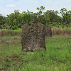 Magnetic termite mound. The mounds serve two purposes: to protect them from flooding during the wet season, and to keep them cool under the intense heat. The mounds are aligned to minimize the sunlight hitting it, hence the reason they all face the same direction.
