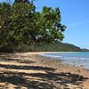The beach at Bingil Bay