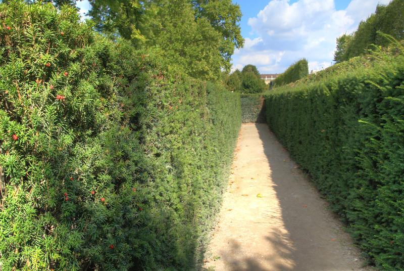 Schöbrunn palace labyrinth