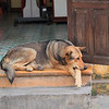 Lounging around in Hoi An