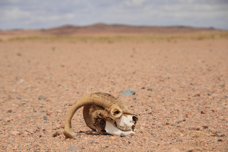 We're now in the desert