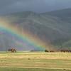 A rainbow with horses