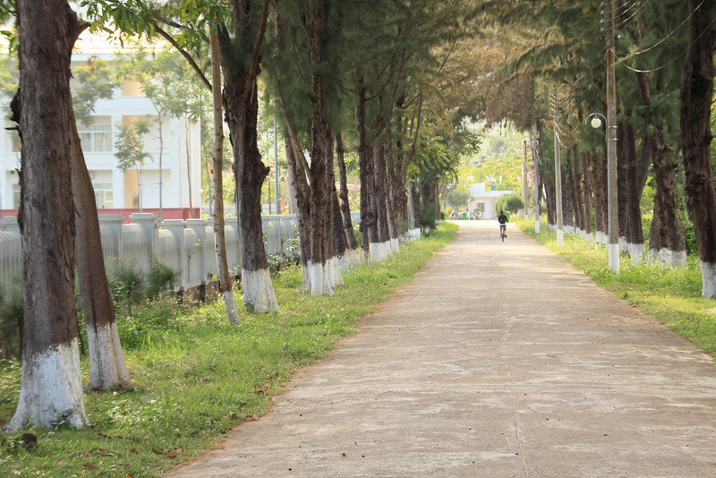 Road by the Leper Hospital
