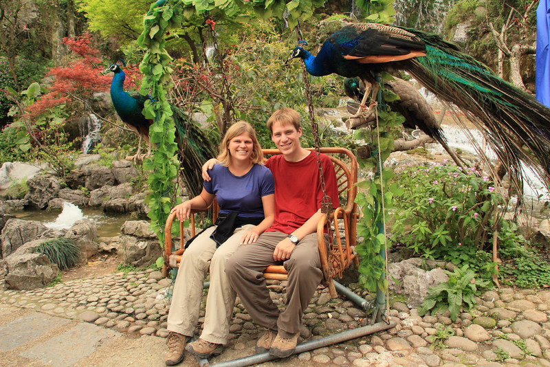 Picture with peacocks!