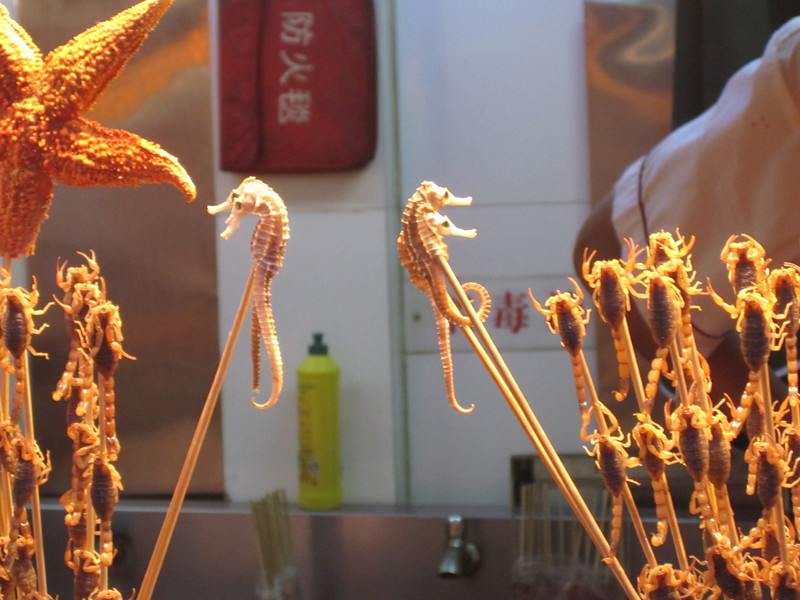 Sea horses, starfish, and scorpions on a stick!