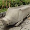 A pig bench