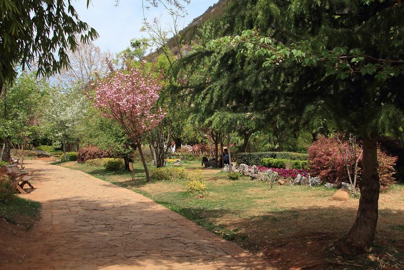 Beautiful park around the Black Dragon Pool