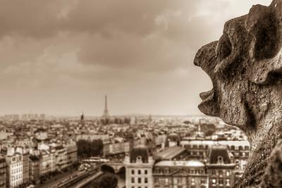 Paris Cityscape on the top of Notre Dame