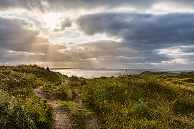 Sand dunes path to Tramore beach