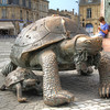 Turtles at Place de la Victoire