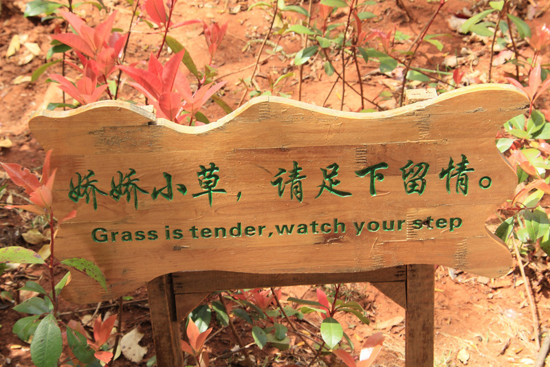 """Grass is tender,watch your step"""