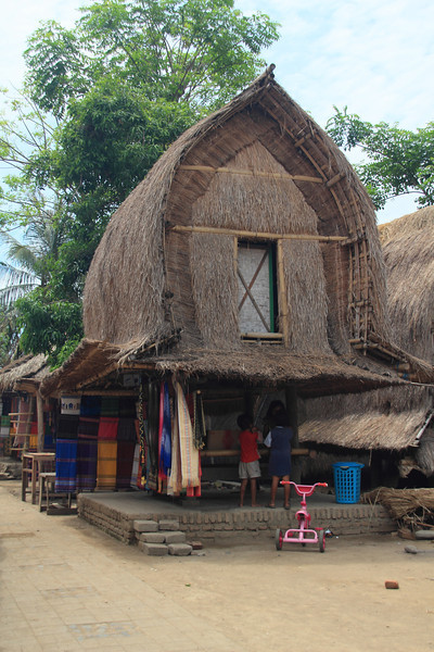 Traditional village on Lombok. Everyone from the village stays in the village and they marry their cousins (just like Waunakee). To court a lady, the man kidnaps her and takes her to another village, and they only return when the lady's family isn't angry anymore.