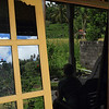 Our homestay had an amazing view of rice fields and hills