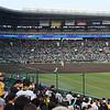All dirt infield at Koshien Stadium