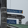 Baldwin Street, the (arguably) world's steepest street according to Guinness World Records.