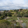 Wellington Botanical Gardens' rose garden (no roses this time of year)