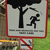 Hiking, Singapore-style. Nature is very dangerous!