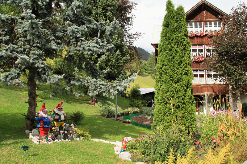 Funny lawn in Gimmelwald