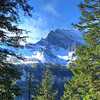 Mt. Jungfrau through the alpine forest