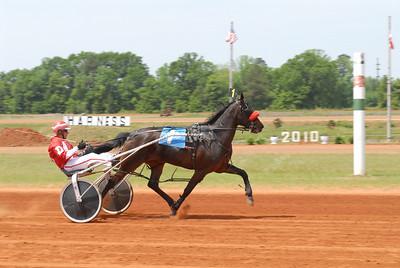 Race #2 winner: Ella V Horse