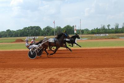 Race #8 winner: Senor Cruiser
