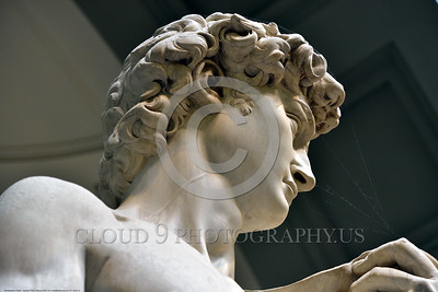 """STY-David 012 Michelangelo included a vein in the neck of his masterpiece, """"David"""", the giant killer, statue picture by Peter J  Mancus"""