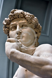 """STY-DAVID 013 Michelangelo executed extremely well """"David's"""" intense focused stare at Golaith, statue picture by Peter J  Mancus"""