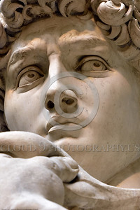 """STY-DAVID 023 Michelangelo executed extremely well """"David's"""" intense focused stare at Golaith, statue picture by Peter J  Mancus"""