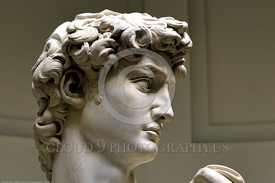 """STY-David 016 Michelangelo splendidly captured """"David"""", the giant killer, at the apex of his intense focused concentration and courageous determination to oppose oppression, statue picture by Peter J  Mancus"""