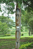 Totems at the National Museum