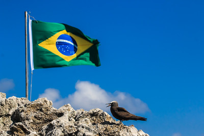 Bandeira do Brasil e Viuvinha