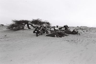 Mauritânea