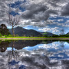 lopez reflection_7593