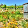 winery-sign_6739