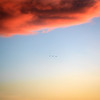 sunset birds cloud 3551-