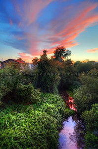 arroyo-grande-creek_8985