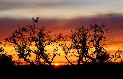 arroyo-grande-sunset_4884