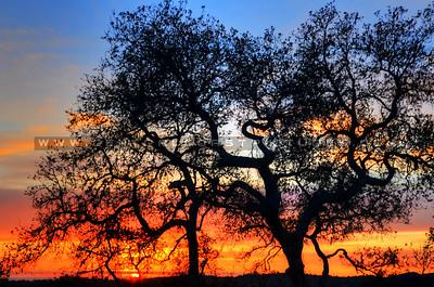 arroyo-grande-sunset_4882