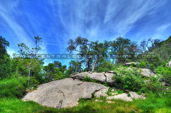 8-24x36-EXAM-ROOM-lopez high mountain_2148