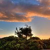 home sunset 3466-
