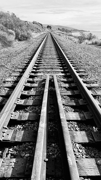 Silent Train in black and white