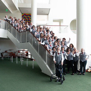 Arsht Miami Volunteers