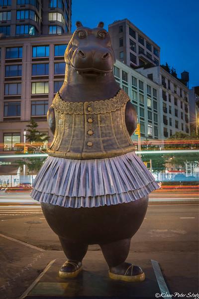 Bjorn Skaarup, Hippo Ballerina
