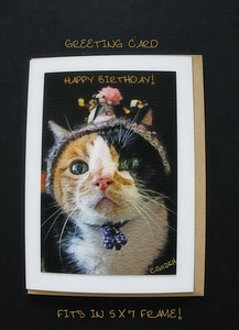 Gracie's Party Hat Greeting Card