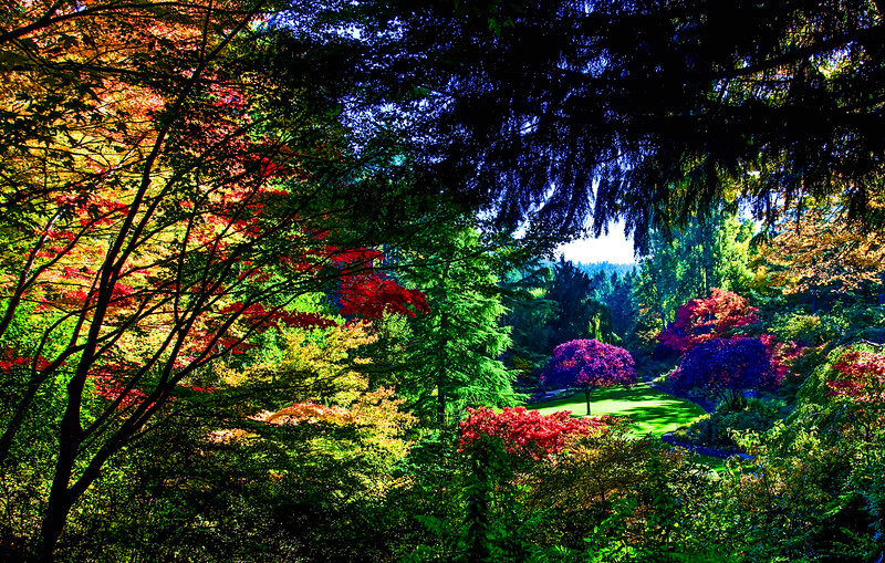 Sunken Garden in the Fall, Butchart Gardens