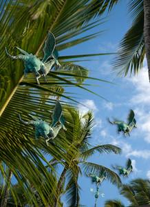 070718 081512 240 flying dragons  4x6