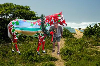 091205 122554  beach, horse,john