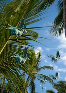 070718 081512 240 flying dragons