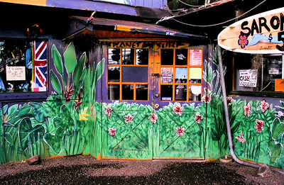 Front Doors of Planet Surf before 10am morning opening ~ art detail  DrewToonz painted the entire building in wonderful murals.  Photographed in 2003. The surf shop moved into Hale'iwa Town, the building has been repainted grey and is empty as of late 2008.  Corner of Pupukea and Kamehameha Hwy, across from Foodland, and Shark's Cove  North Shore of O'ahu Andrew Miller, artist